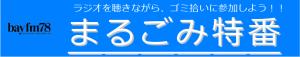 まるごみ'18 in CHIBA 参加地域と結果